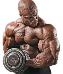bodybuilder001