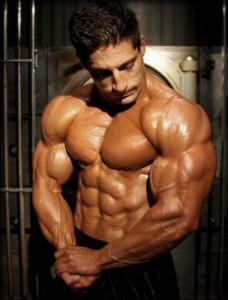 gain-muscle-mass