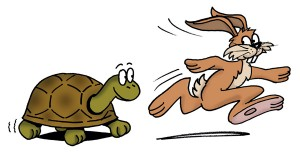 Hare-and-Tortoise