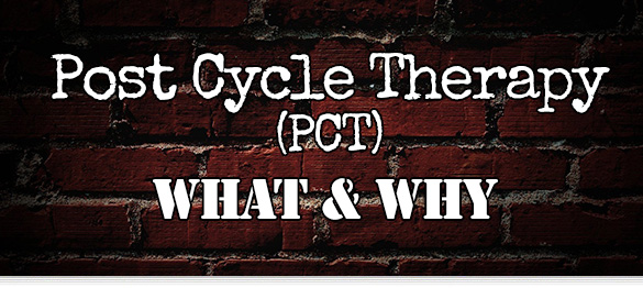 pct-post-cycle-therapy-serms