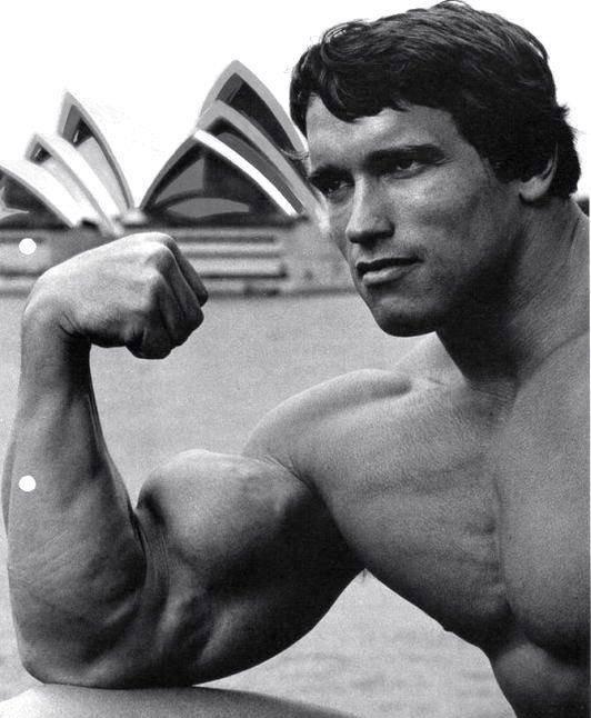 Arnold-Schwarzenegger-biceps-focus