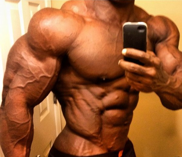 Shredded-and-Jacked