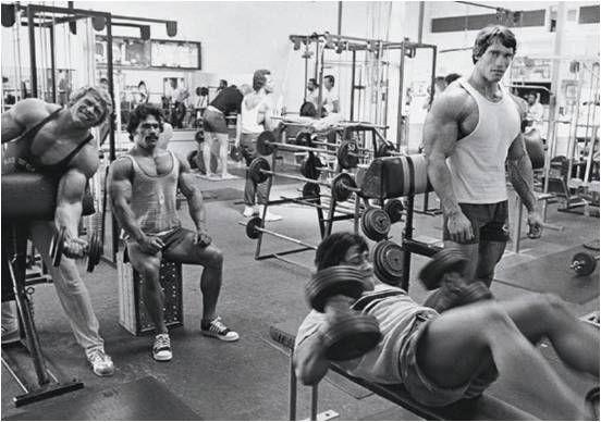 gym-culture