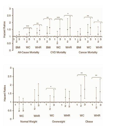La medida de la cintura dice más sobre la salud que el IMC 2-3