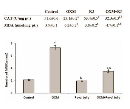 oxymetholone indication