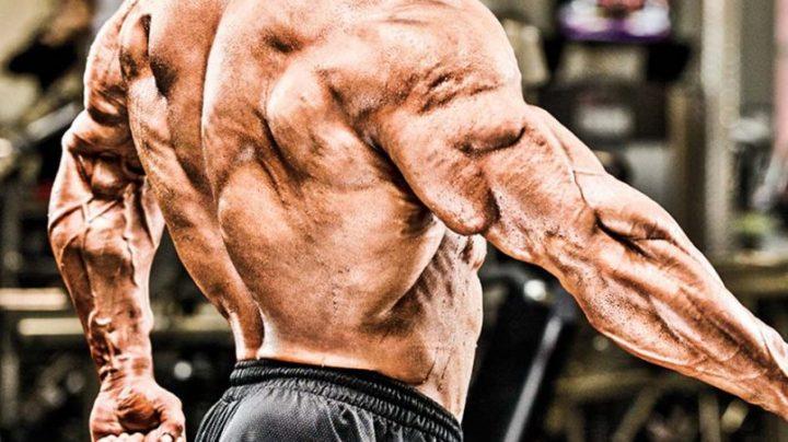 bodybuilding-steroids