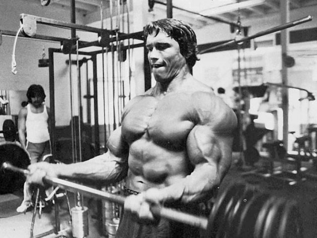 arnold-muscle-range-of-motion