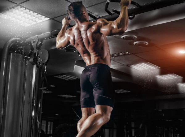 Betaine Might Make Muscle mass and Bones Stronger