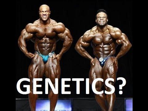 genetics-bodybuilders