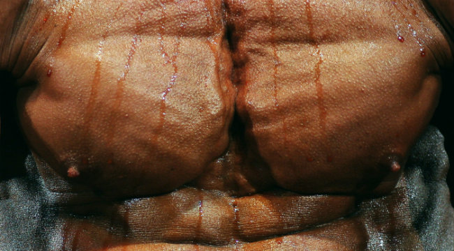 muscle-pecs